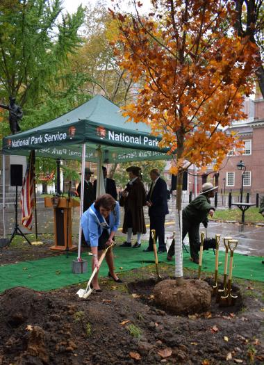 """The DAR was the first to add dirt to the new tree's roots. As First Vice President General Denise VanBuren remarked at the ceremony: """"The National Society Daughters of the American Revolution is so very grateful for this opportunity to plant modern-day Liberty Trees that will take root and flourish by 2026. We know that like our nation, they will weather storms, survive droughts, and reach forever upward; like our people, they will branch out and grow stronger with the passage of time; and like our hard"""