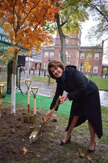DAR First Vice President General Denise VanBuren getting in one more celebratory shovel at the newest tree in Independence National Historical Park which will continue to be supported by DAR for many years to come.