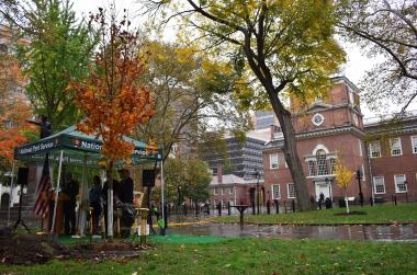 The ceremony took place at the site of the planting of the first of the 76 trees directly behind Independence Hall. Both the orange leaved tree in the forefront as well as the small yellow leaved tree in the background were the first of the DAR trees to be planted.
