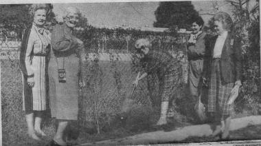 On 4 June 1983, the Green Mountain Boys Chapter was organized in San Antonio TX. Over the years, the members have faithfully served DAR and the community through a variety of projects. Here is a photograph, which originally was published in the San Antonio Recorder on 12/12/1985, showing members planting crepe myrtle trees at a local library.