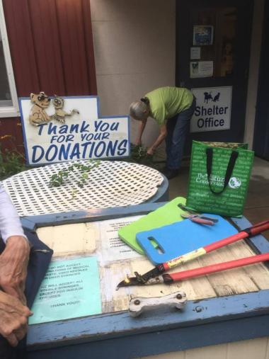 The Mohegan Chapter volunteered to work on the garden beds at the SPCA of Westchester.